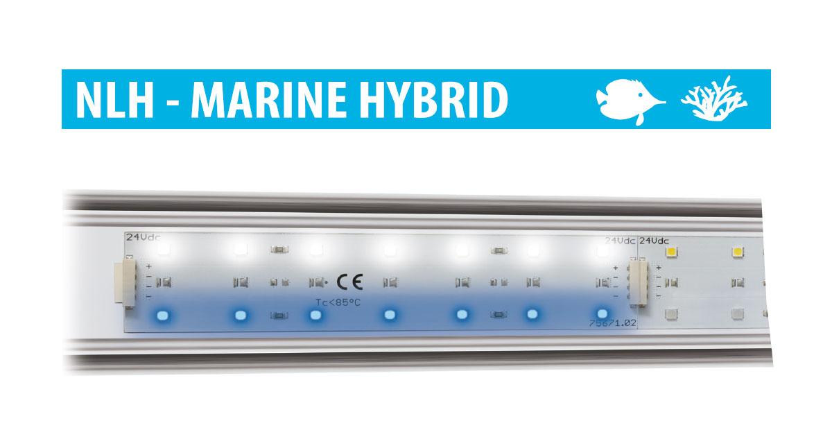 Newa led marine hybrid newa eccellenza internazionale for Led alta efficienza