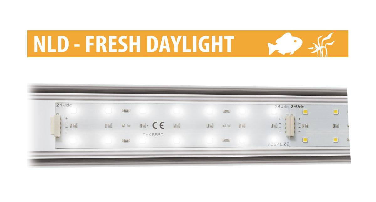 Newa led fresh daylight newa eccellenza internazionale for Led alta efficienza